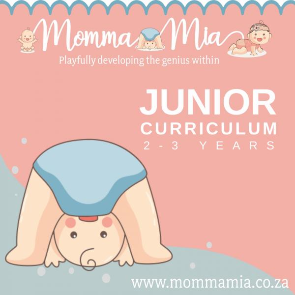 Junior Curriculum